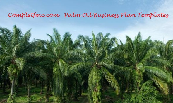 Sample Free Oil Palm Plantation Business Plan for Nigerians
